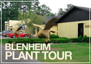 planttour